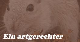 Hamsterkäfig-artgerecht-Wühlen