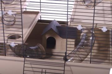 Hamsterkäfig beige mit Haus