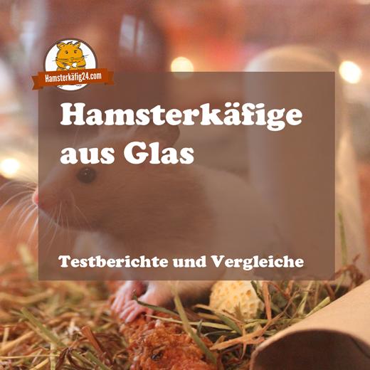Hamsterkäfige aus Glas