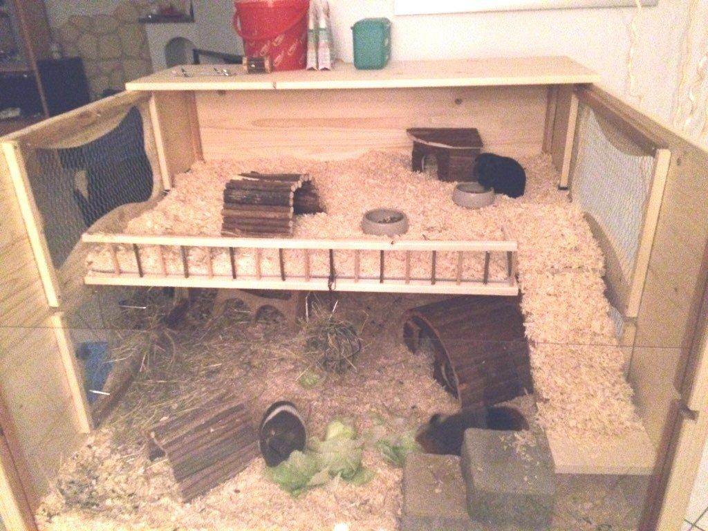 Riesiger Hamsterkäfig aus Holz