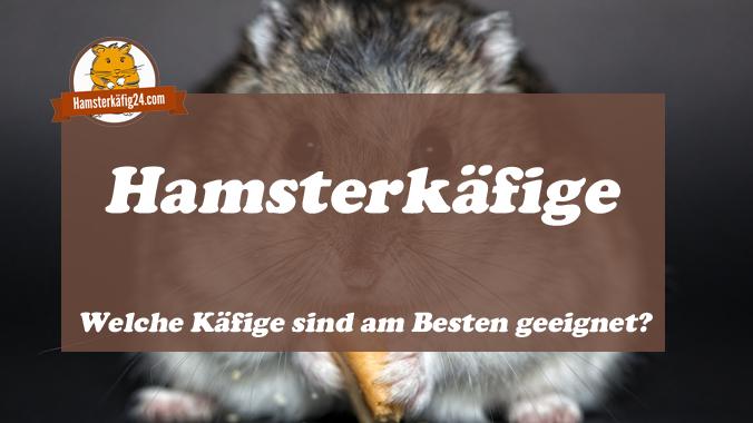 Hamsterkäfige Empfehlungen